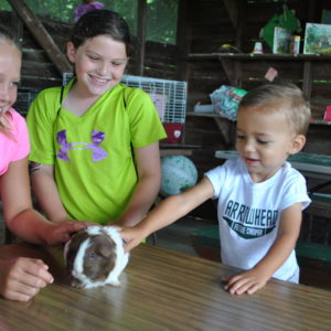 PA summer camps nature study